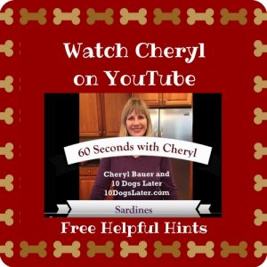 Cheryl Bauer, 10 Dogs Later, YouTube, Tips, Dogs