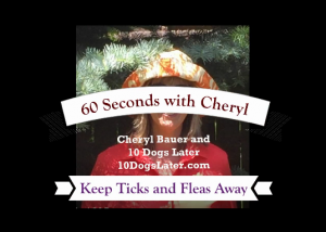 60 Seconds with Cheryl: Repel Ticks and Fleas from Your Dog: Cheryl Bauer and 10 Dogs Later